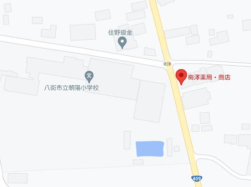 umezawahiroshi-jitaku-jusyo